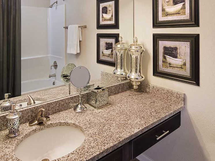 Executive Finish Bathrooms at Paces Ridge at Vinings, Atlanta, GA 30339