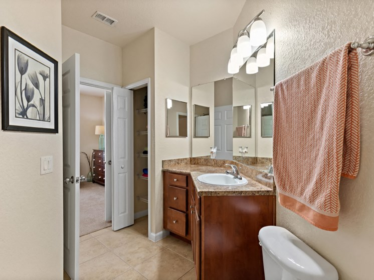 Vanity Storage Cabinet With Modern Lights at Savannah at Park Central, Orlando, 32839 Millenia