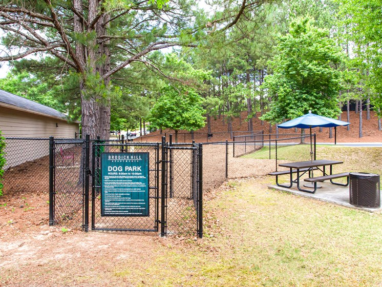 Brodick Hills dog park with seating
