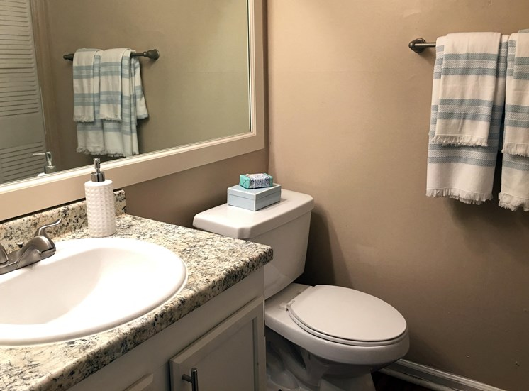 Bathroom Accessories at Collier Ridge, Georgia, 30327