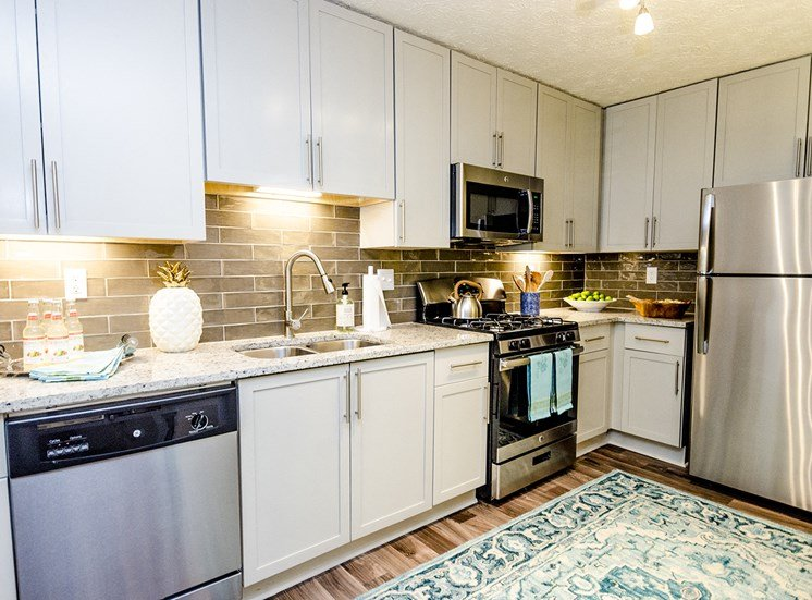 Stainless Steel, Energy Efficient Appliances at Collier Ridge, Atlanta