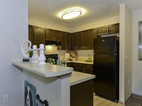 Refrigerator And Kitchen Appliances at Dawson Forest, Dawsonville, GA, 30534