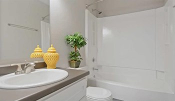 3497 Meadowglenn Village Ln 1-3 Beds Apartment for Rent Photo Gallery 1