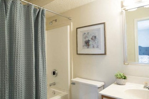 Village at Cliffdale model guest bath