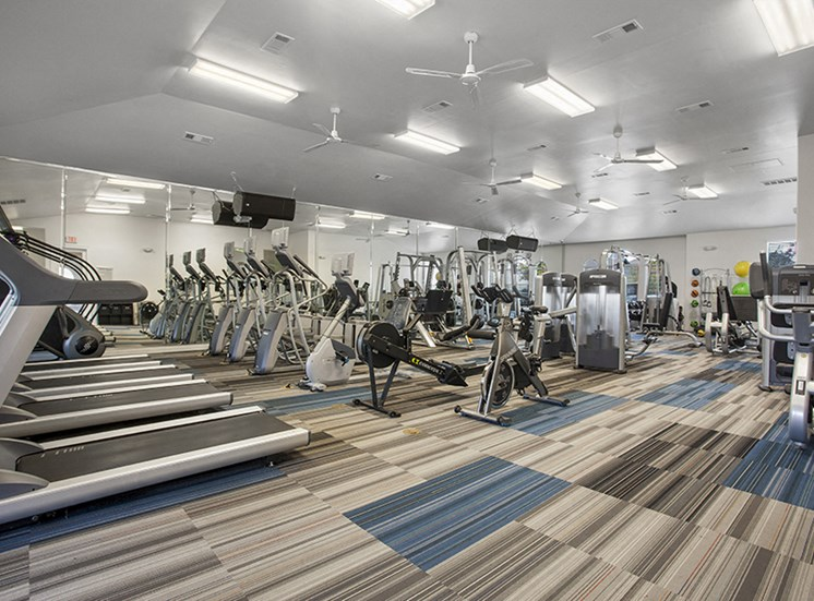 Cardio Machines In Gym at Century Travesia, Texas, 78728