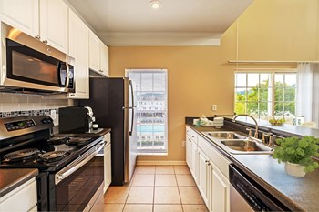 611 East Waterfront Dr 1-3 Beds Townhouse for Rent Photo Gallery 1