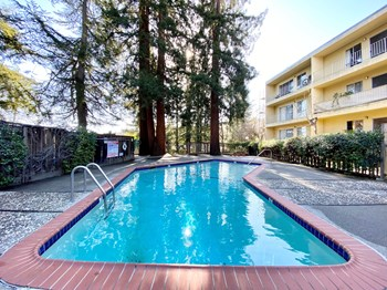 3686 Mt. Diablo Blvd. 1-2 Beds Apartment for Rent Photo Gallery 1