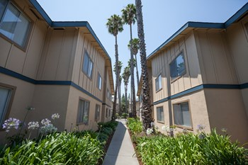 2420 Pacific Dr 1-2 Beds Apartment for Rent Photo Gallery 1