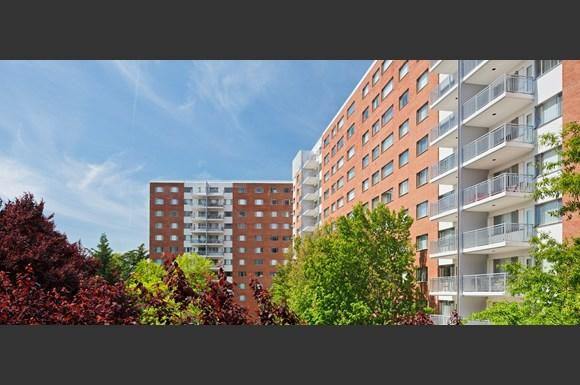 Blair House Apartments 8201 16th Street Silver Spring MD RENTCaf