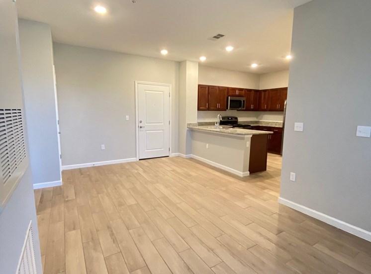 Living Room/Dining Room/Kitchen