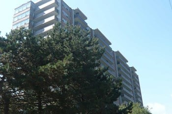 360 Torrance Street 1-2 Beds Apartment for Rent Photo Gallery 1