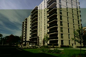 5166 Lakeshore Road 1-2 Beds Apartment for Rent Photo Gallery 1