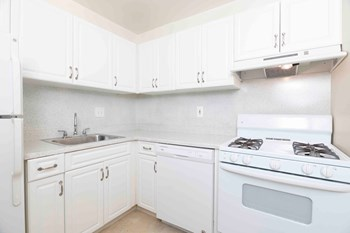 661 Dulles Park Court #104 1-2 Beds Apartment for Rent Photo Gallery 1