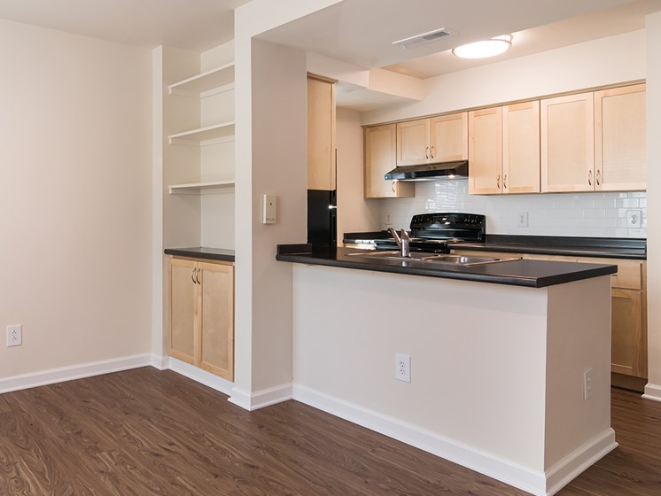 interior apartment kitchen counter top and living room cabinetry_Crawford Square Pittsburgh, PA