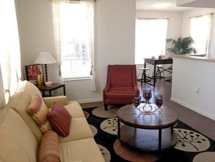 interior apartment living room-East Meadows San Antonio TX