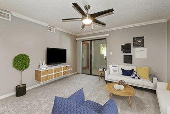 Best Cheap Apartments in Chandler, AZ: from $575 | RENTCafé