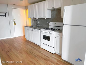 959 W. Webster 1-2 Beds Apartment for Rent Photo Gallery 1