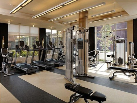 Fitness center with large windows, treadmills and a workout bench