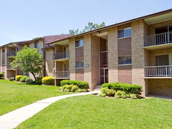 3598 Powder Mill Road 1 Bed Apartment for Rent Photo Gallery 1