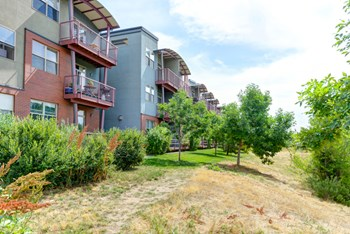 2910 Bluff St. #131 2 Beds Apartment for Rent Photo Gallery 1