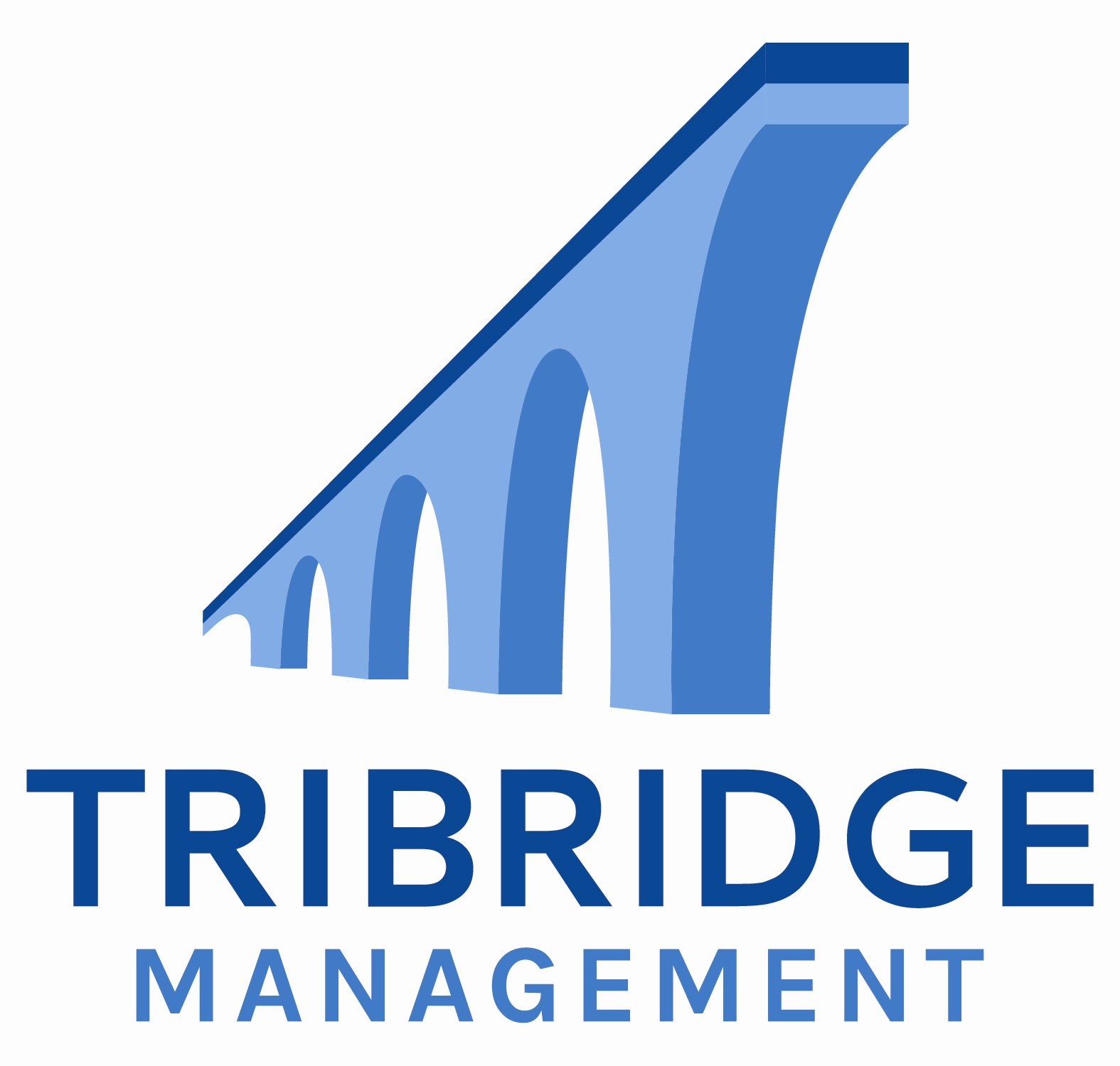 Tribridge Management, LLC Corporate ILS Logo 116