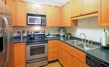 8718 Wintersweet Lane 1-3 Beds Apartment for Rent Photo Gallery 1