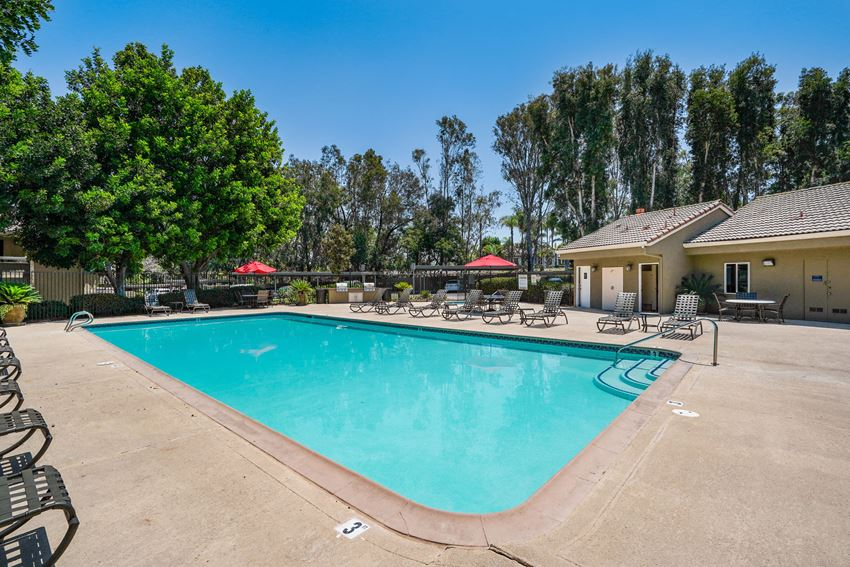 Apartments for Rent in Vista California-Rancho Hills Swimming Pool Surrounded by Beautiful Landscape, Shaded Areas to Cool Off, and Sun Chairs