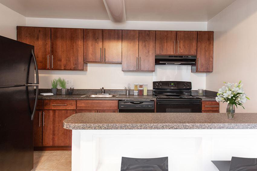 Kenilworth at Charles Apartments, Renovated Kitchen, Towson Md 21204