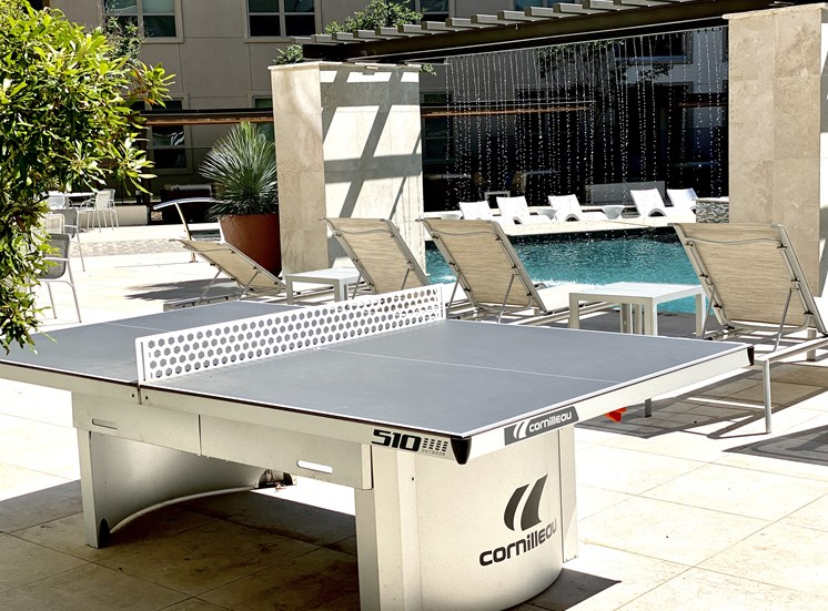 Poolside Ping Pong