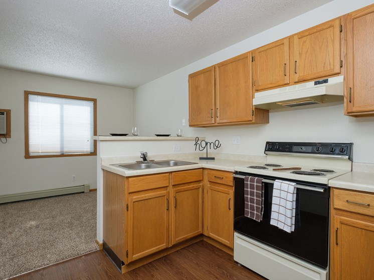 Ashbury Apartments | Efficiency | Kitchen | Living Space