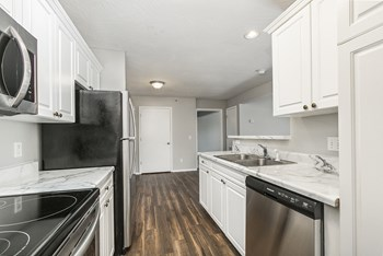 1450 West Lark Street Studio-3 Beds Apartment for Rent Photo Gallery 1