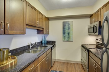 111 East Kellogg Blvd 1 Bed Apartment for Rent Photo Gallery 1