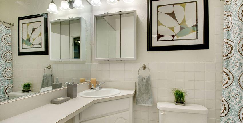 Ridgewood Arches Apartments in Minneapolis, MN Bathroom