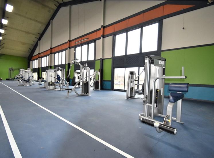 Gym Weight Machines