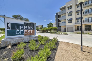 3819 Harry Wurzbach Rd. Studio Apartment for Rent Photo Gallery 1
