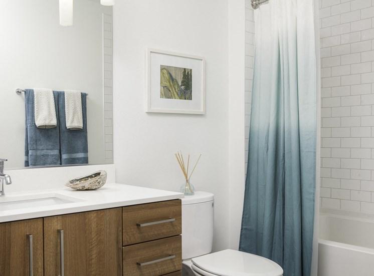 4730 California Apartments Bathroom Modern, Flat-Panel Cabinets