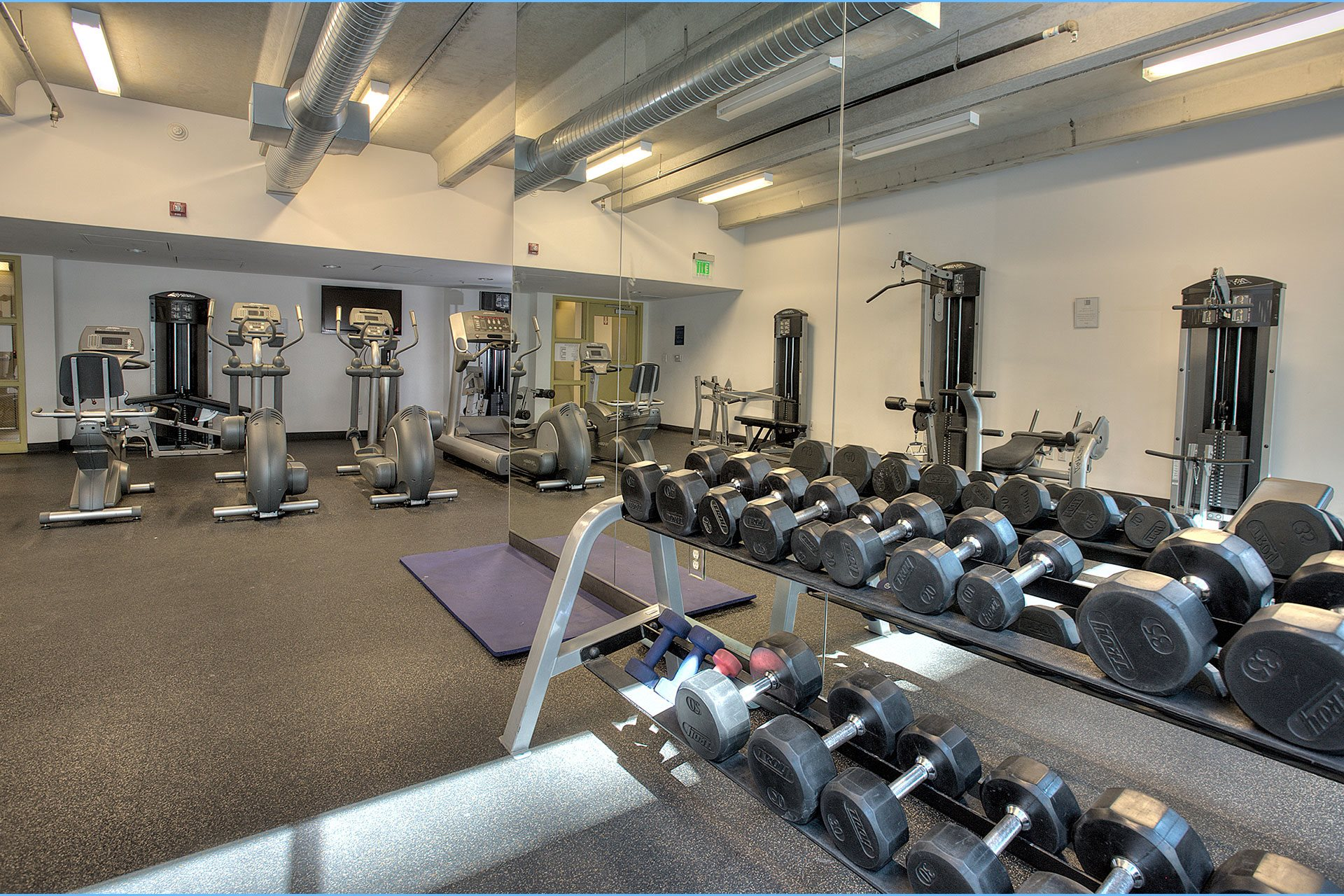 800J Lofts Fitness Center Free Weights