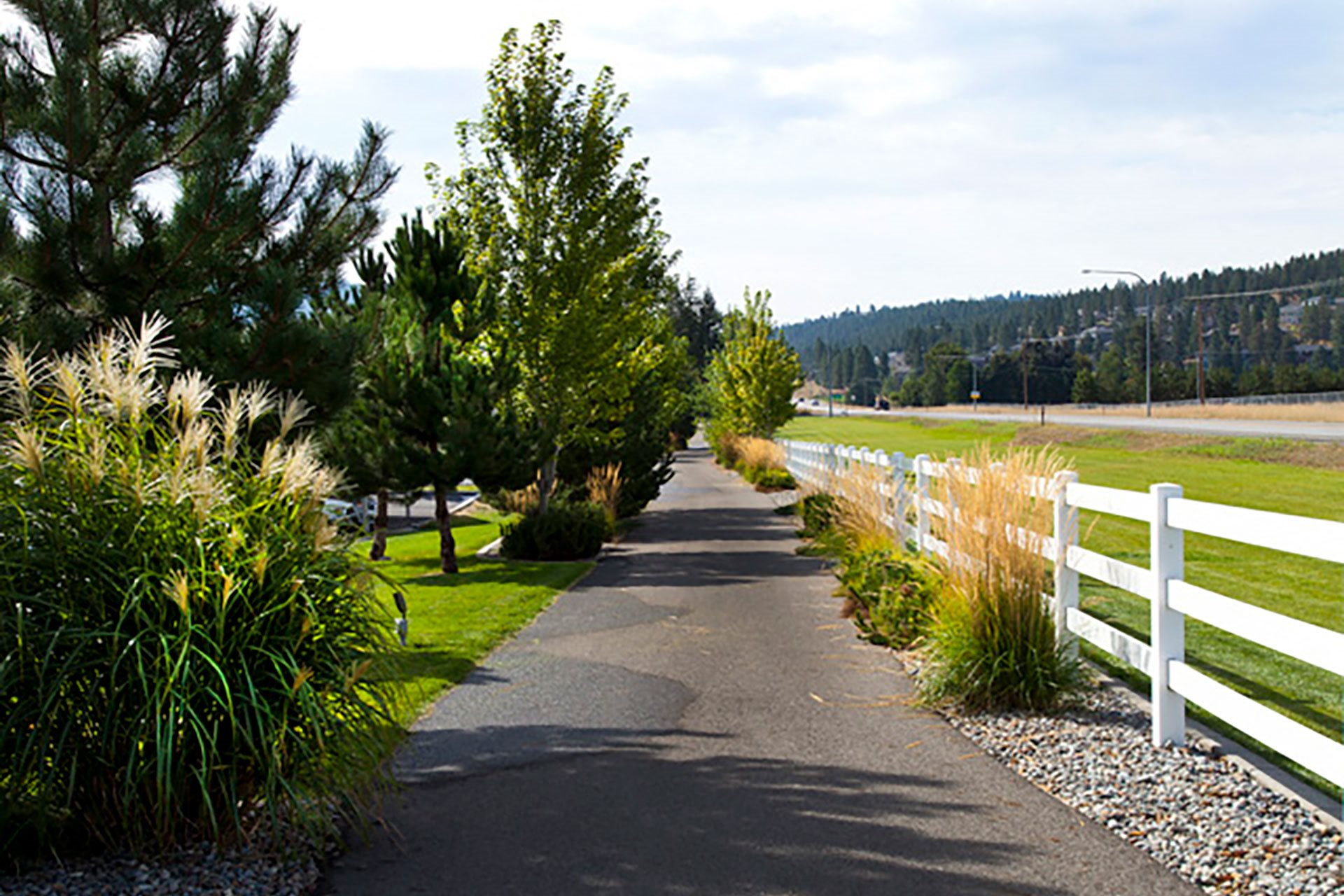 Pine Valley Ranch Apartments Trailhead and Hiking Paths