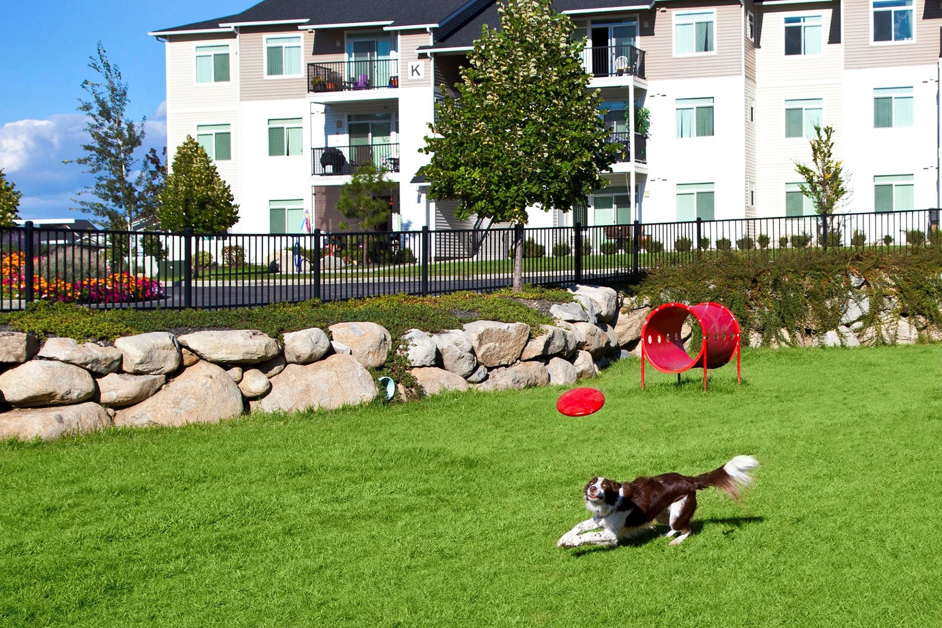 River House Apartments Dog Park