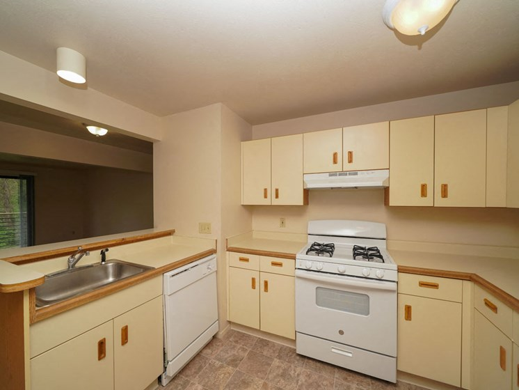 Stainless Steel Sink With Faucet In Kitchen at Hurwich Farms Apartments, South Bend, 46628