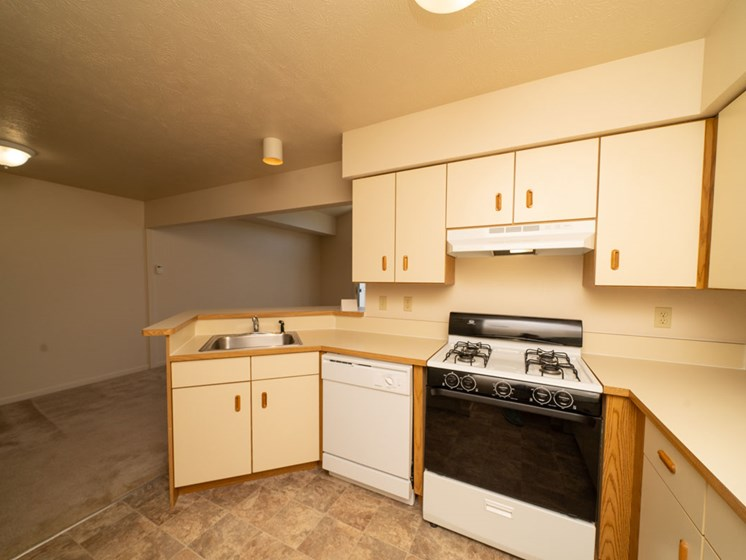 Kitchen with Dishwasher and Gas Range at Canal 2 Apartments in Lansing, MI
