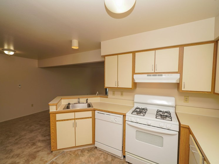 Kitchen with Dishwasher and Gas Range at Canal Club Apartments in Lansing, MI