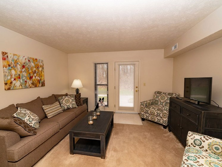 Living Room With Television at Arbor Lakes Apartments, Elkhart, Indiana