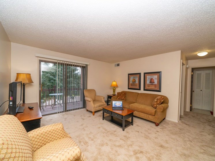 Classic Living Room Design With Television at Seville Apartments, Kalamazoo