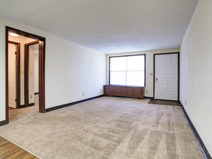 Living room with plush carpeting and window