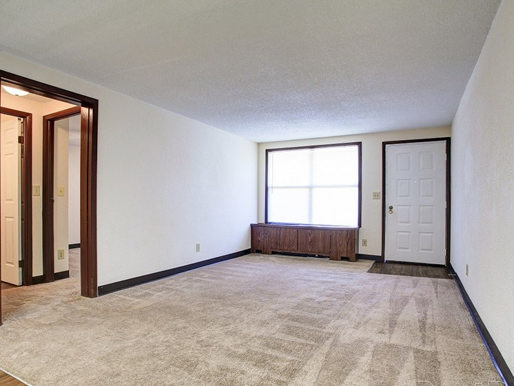 Living room with plush carpet and window