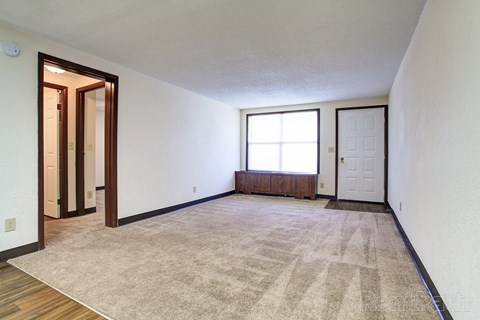 Living room with plush carpet and kitchen area with hardwood-like flooring.