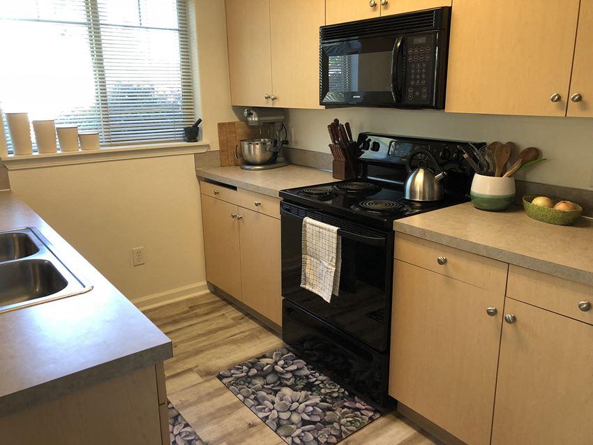 Falcon Ridge kitchen