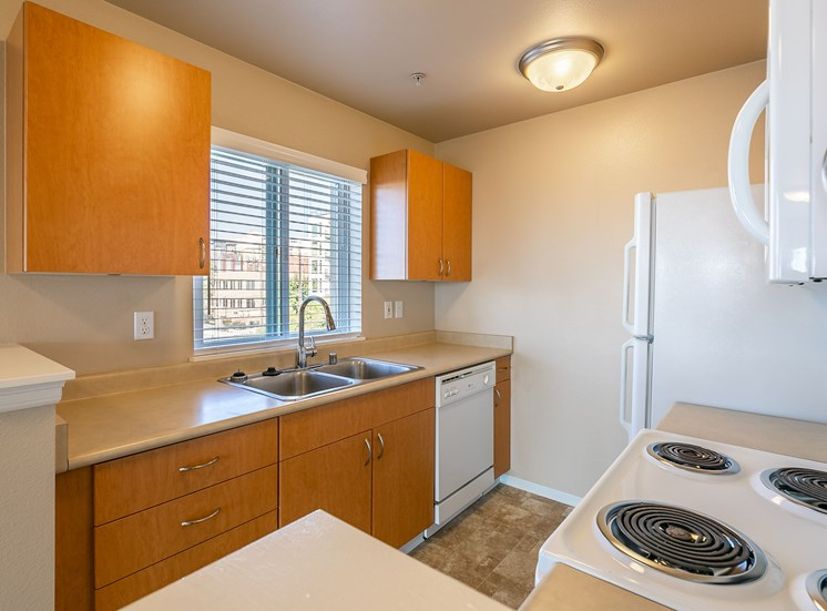 WA_Seattle_UptownQueenAnne_Kitchen Sink and Cabinets