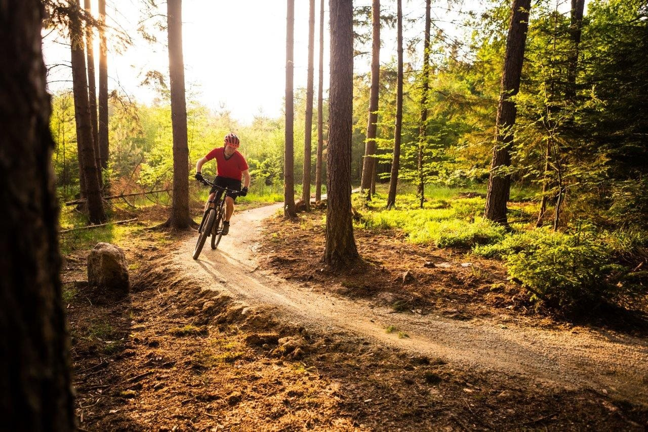 Man riding a mountain bike on a wooded trail
